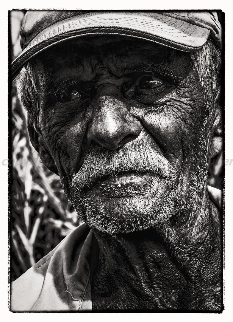 Arbeiter auf einer Zuckerrohrplantage