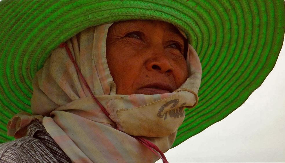Arbeiterin auf dem Reisfeld