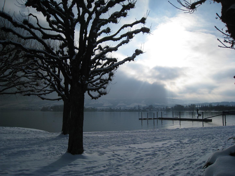 Arbon mit Schnee
