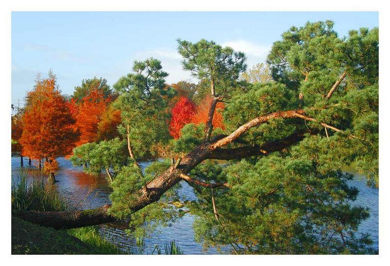 Arboretum Ellerhoop (11)