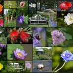 Arboretum Ellerhoop 2015