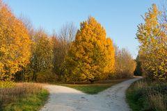 Arboretum Eschborn 6