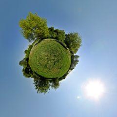 Arboretumkugel 2