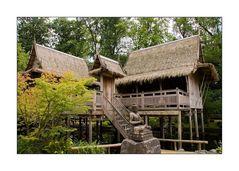 Arcen NL - Kasteeltuinen - Asiahaus