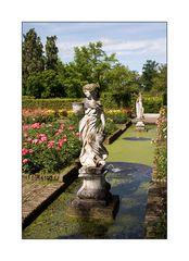 Arcen NL - Kasteeltuinen - Rosengarten Impression