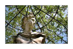 Arcen NL - Kasteeltuinen - Unter dem Rosenhimmel