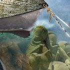 archéologie sous marine