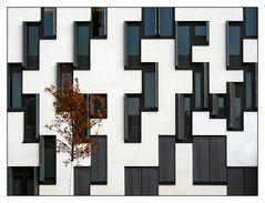 Architektur und etwas Natur