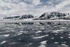 Arctic...