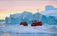 arctic pastel colors