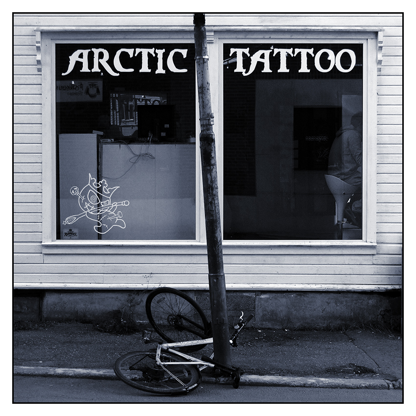 Arctic Tattoo