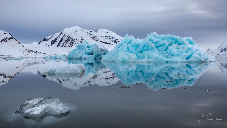 * arctic.land.scape *