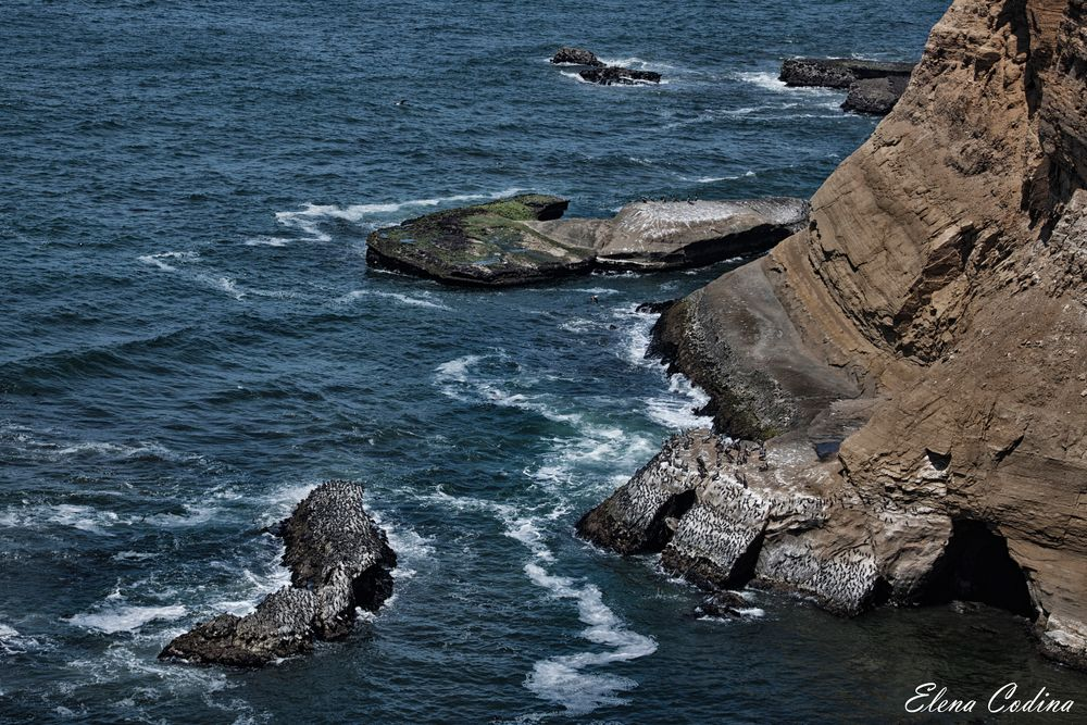 Arena y Mar