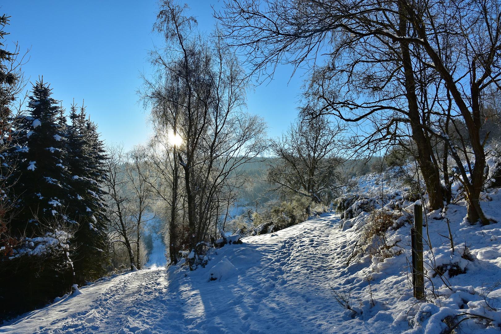 Arft in der Eifel