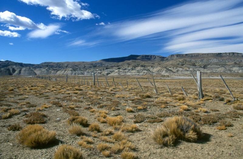 Argentinische Pampa