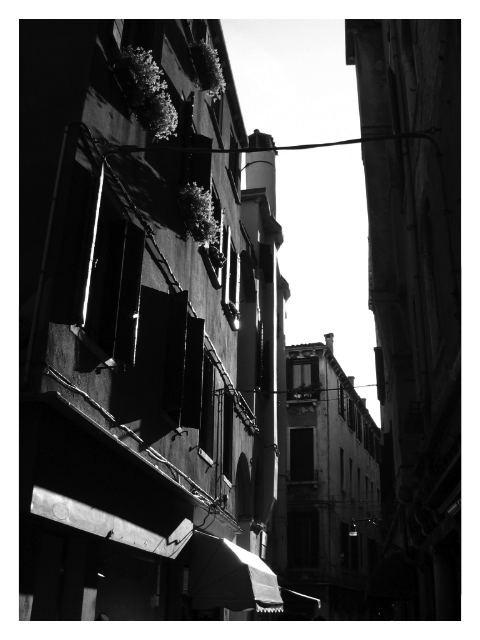 _arhitecturavenice_