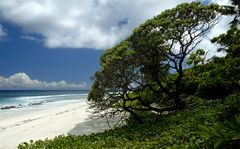 Aride Island 3