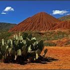 Arizona's Landschaften ...