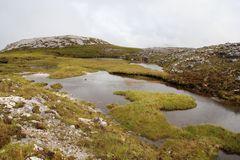 Arktische Fjäll-Landschaft im Beinn Eigh Nature Reserve