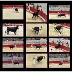Arles - Amphitheater - Der Stier Nr. 3 und die Toreros