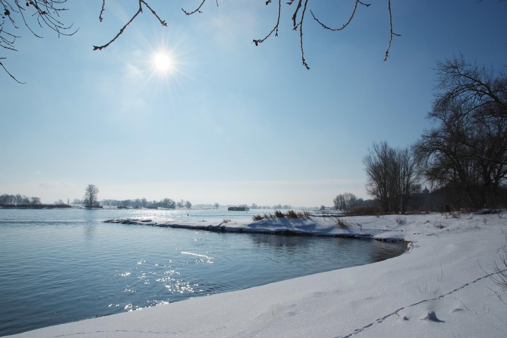 Arneburg - Elbe bei Arneburg im Winter