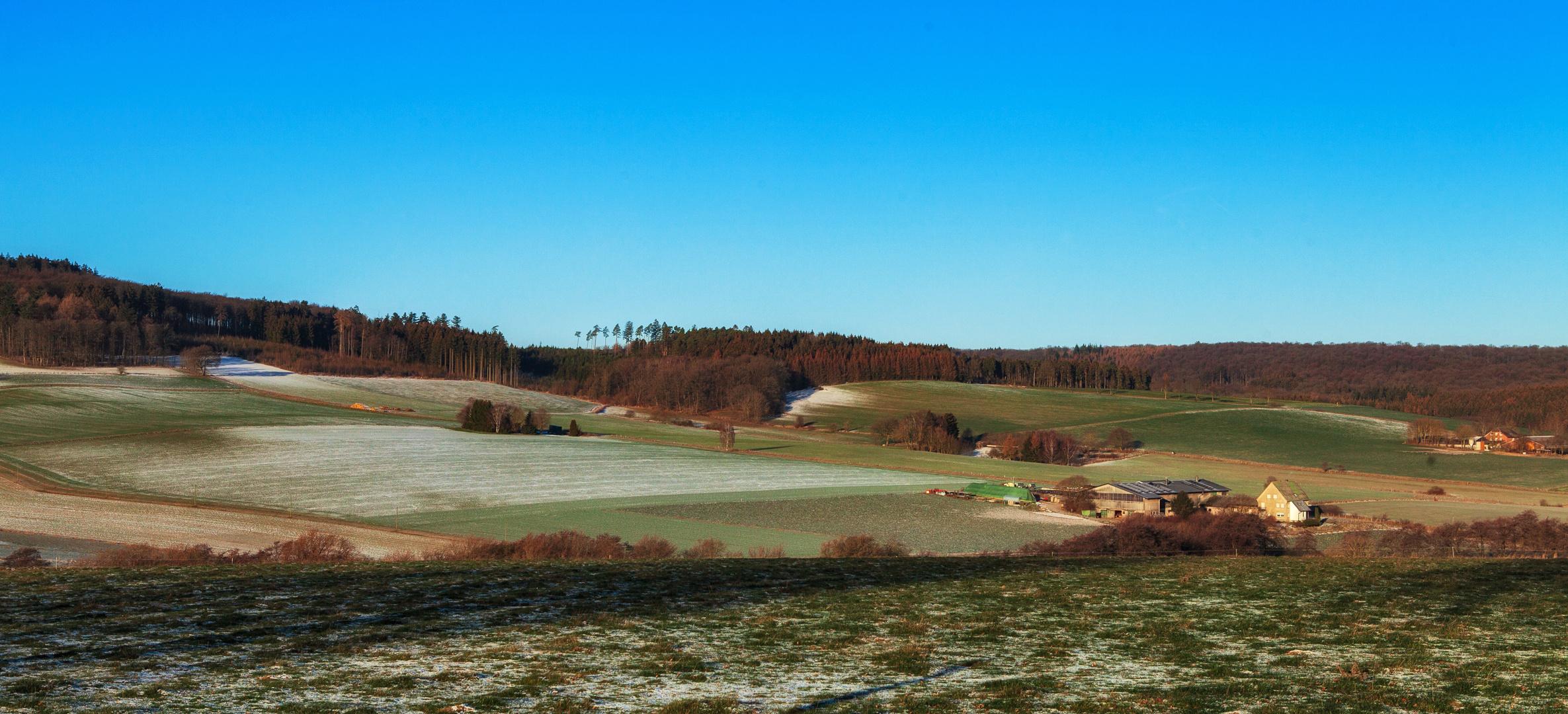 Arnsberger Wald im Januar 2019