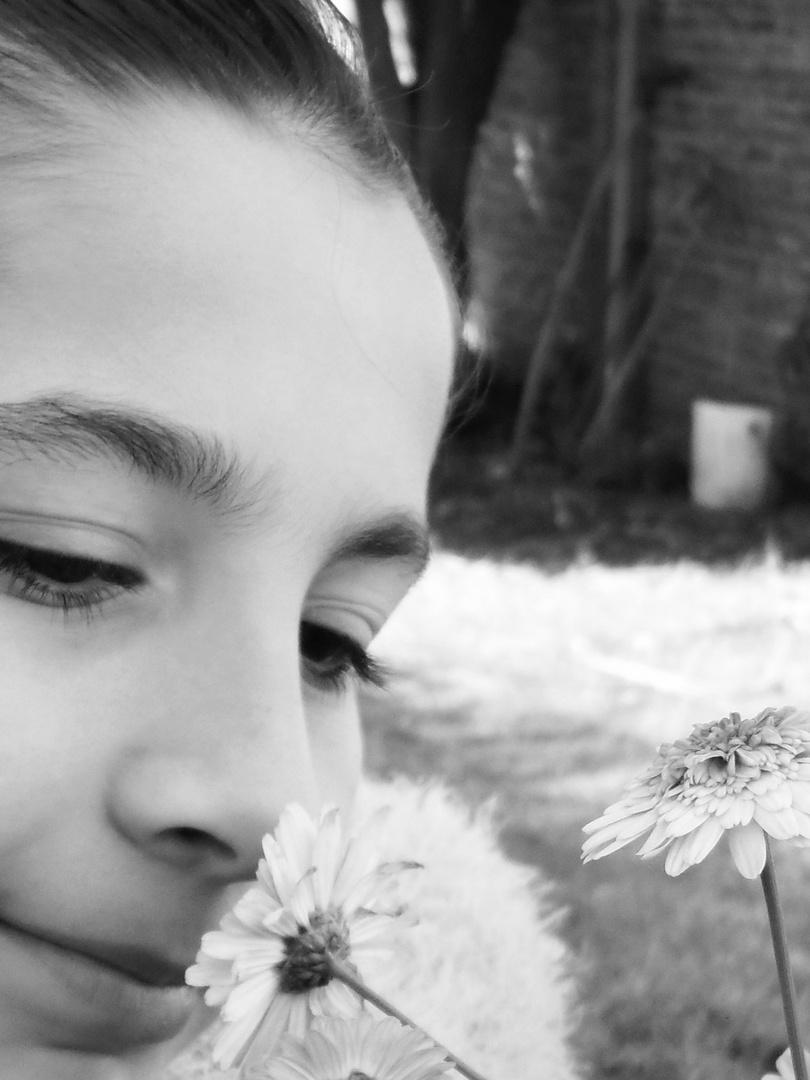 Aroma primavera