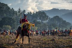 Arrival Of The Clans ~ Pasola, Sumba Barat