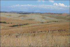 Arrivederci Toscana