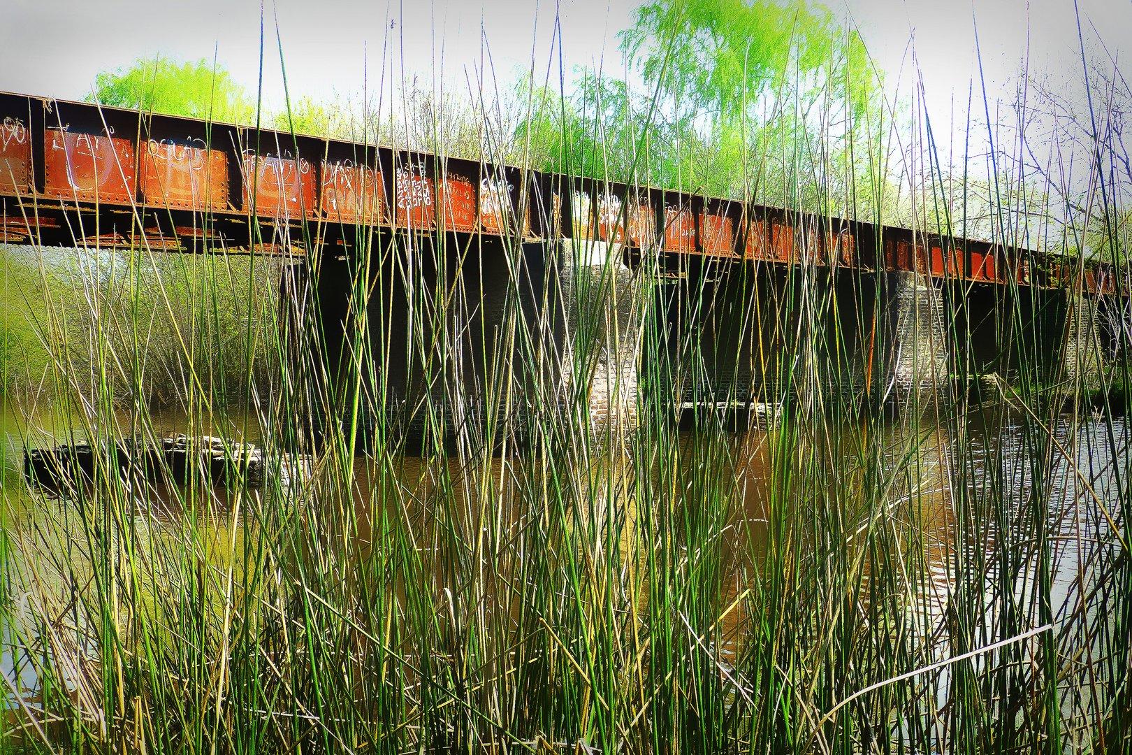 Arroyo El Pescado, La Plata, Argentina