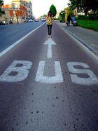 Arrêt 1 : le bus .