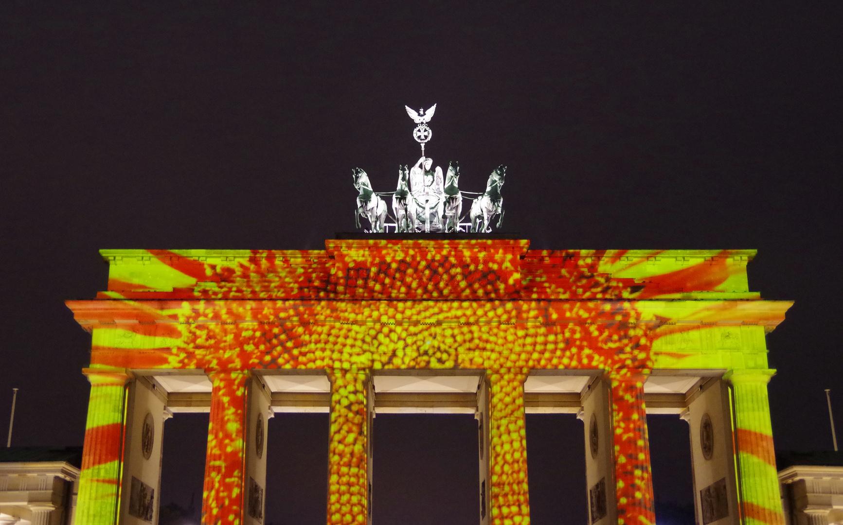 Art of Lights - Berlin 2014 - Brandenburger Tor - 2