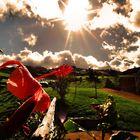 Arte Fernseh Sendung über den Azoren heute um 14.30 und Klima Irrtümer