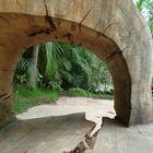 arte na madeira Inhotim/MG/Brasil