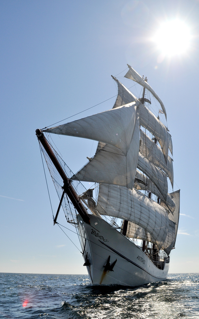 Artemis Tall Ship