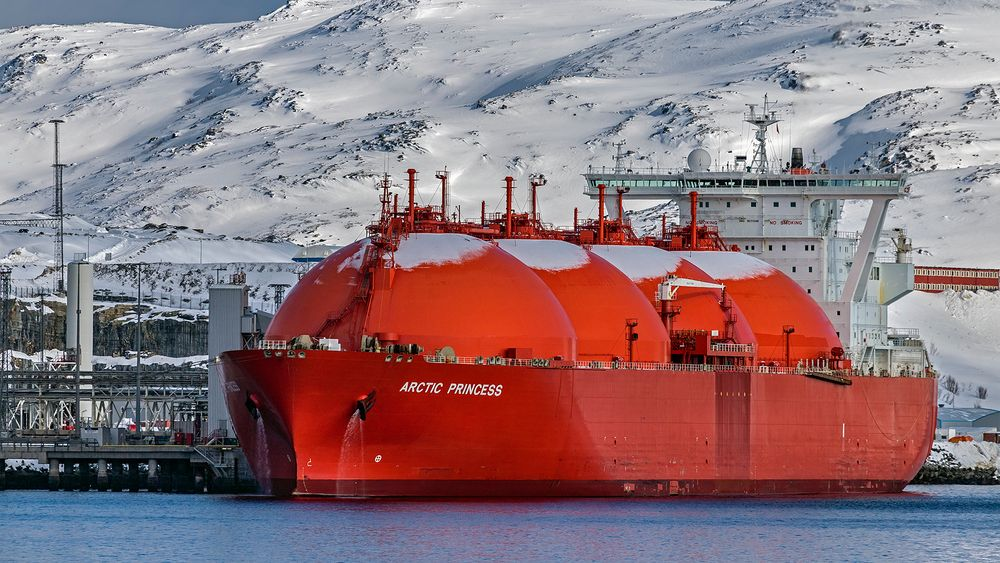 ARTIC PRINCESS, HAMMERFEST (NOR)