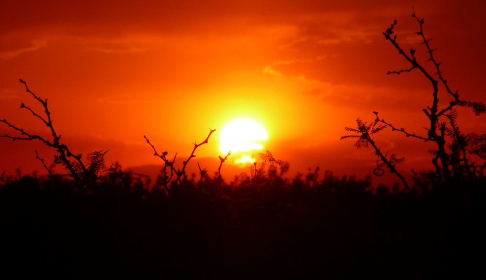 As The Sun Went To Sleep II