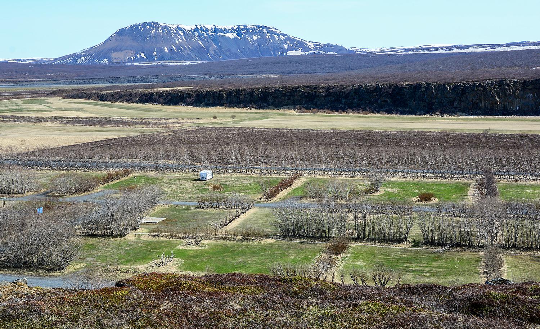 Asbyrgi - Campingplatz am Nationalpark Vatnajökull