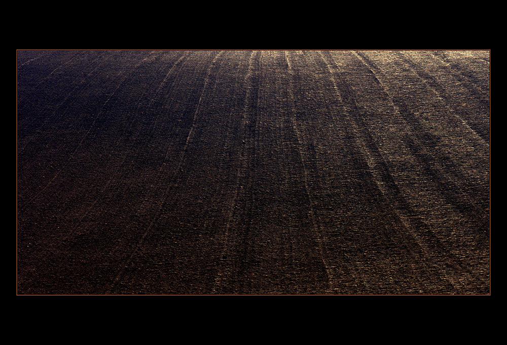 ASCHE UND STAUB... Der Hügel von Majdanek... (geänderte Fassung)