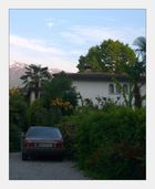 Ascona unter Palmen