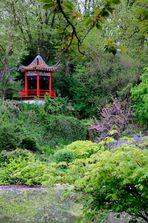 Asiatischer Garten 2