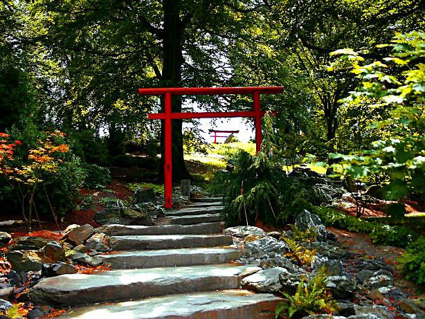 Asiatischer Garten Erfurt Ega Foto Bild Landschaft Garten