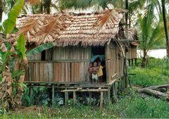 Asmat Dorf West Papua