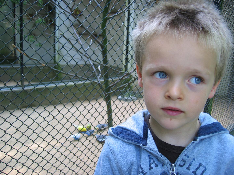 Erwachsene asperger syndrom Könnten Sie