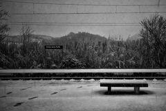 Aspettando il treno che non venne mai...