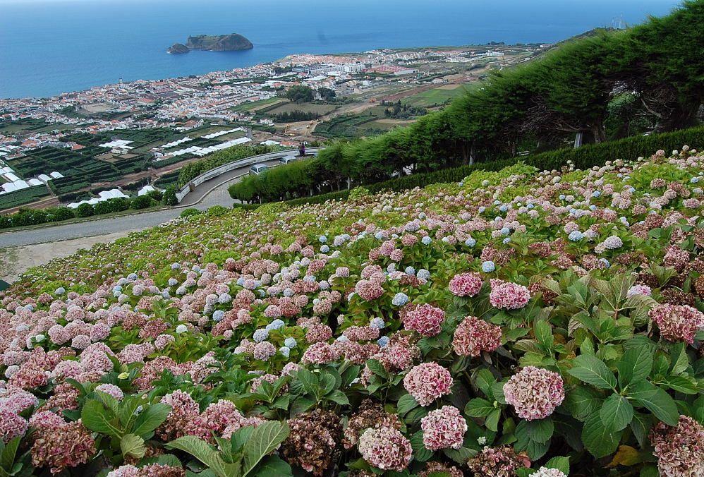Asphaltierte und Betonierte Riviera