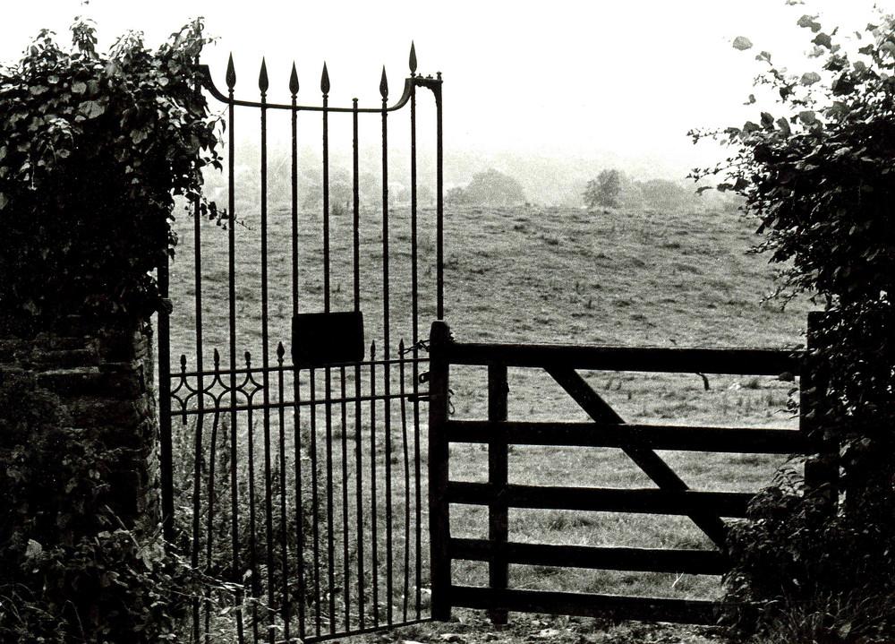 Assymetric gate