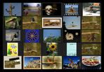 AST-Projekt - Collage Vol.11 [ÄSTe #251-#275]