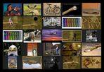 AST-Projekt - Collage Vol.12 [ÄSTe #276-#300]