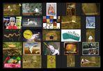 AST-Projekt - Collage Vol.7 [ÄSTe #151-#175]